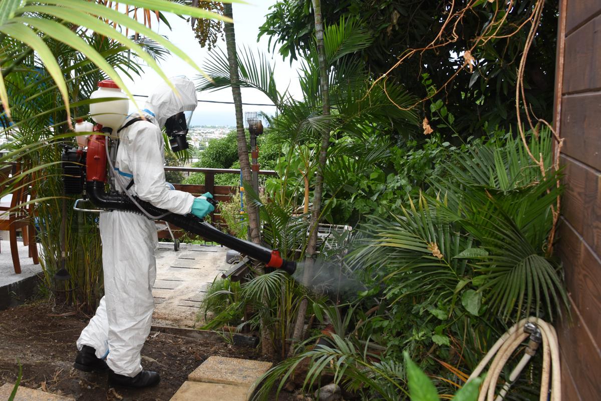 Le RSMA-R en renfort contre la dengue © ADJ Audrey/FAZSOI