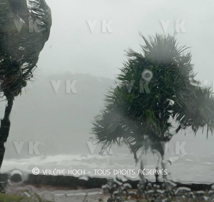 8 à 11 phénomènes cycloniques attendus © Valérie Koch - Tous droits réservés