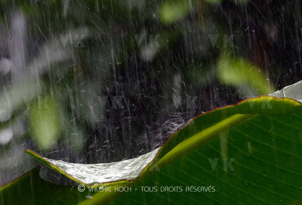 Tempête tropicale Calvinia, point de situation © Valérie Koch - Tous droits réservés