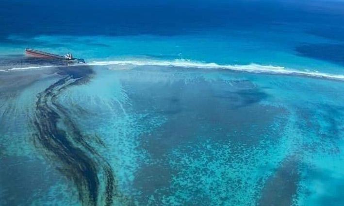 Cellule de crise en soutien à l'île Maurice