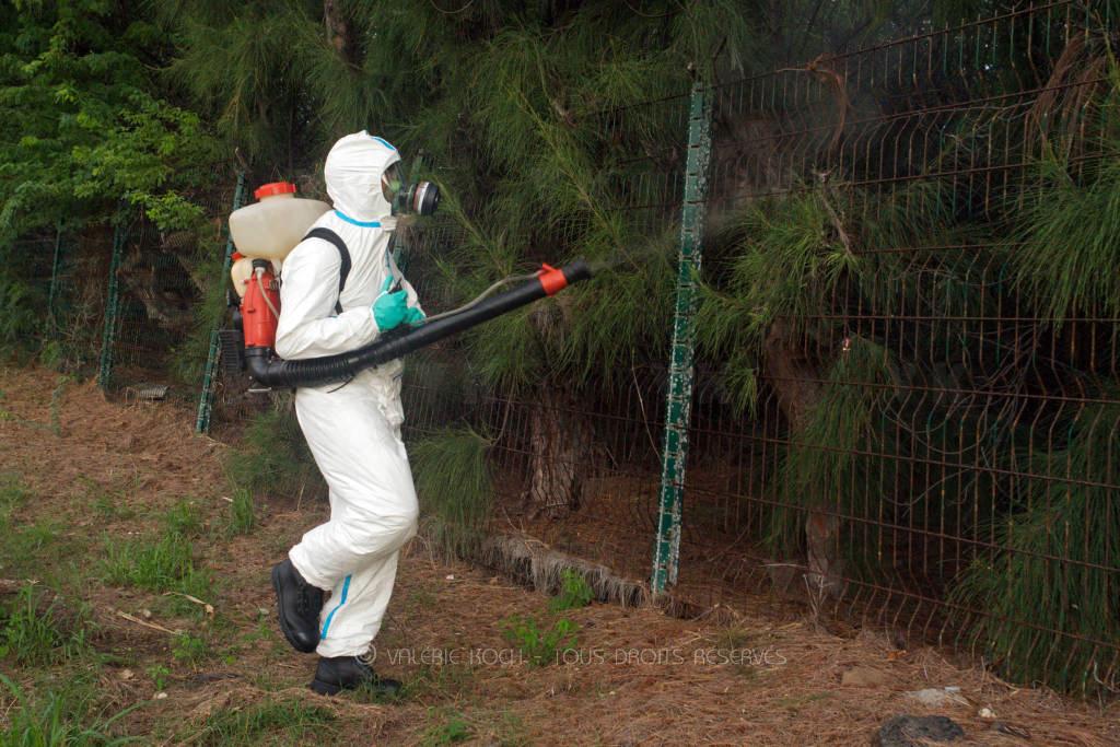 UIISC 1 et 7 contre les moustiques © Valérie Koch - Tous droits réservés